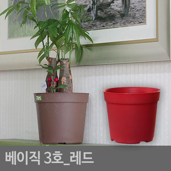 베이직3호(2개1세트)레드 