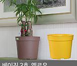 베이직3호(2개1세트)옐로우 