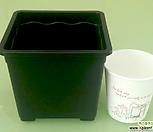 도매-1BOX(150개) 3호 플분12cm 플라스틱화분 사각포트|