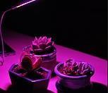 USB LED+스탠드 세트/다육이 실내 재배 필수품/식물생장등 LED등 2.8W 4.7W/다육식물&수생식물/스텐드|