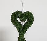 밀런하트(공중식물)|