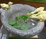 가든데코(작은연못)|