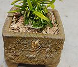 금누각분갈이-최고급수제국산분|