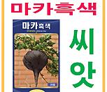 생활백화점 씨앗 채소씨앗 마카(흑색) 