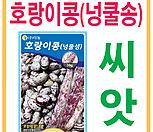 생활백화점 씨앗 채소씨앗 호랑이강낭콩(넝쿨성) 