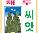 생활백화점 씨앗 채소씨앗 채두(꼬투리콩) 