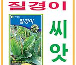 생활백화점 씨앗 채소씨앗 질경이(청)씨앗 