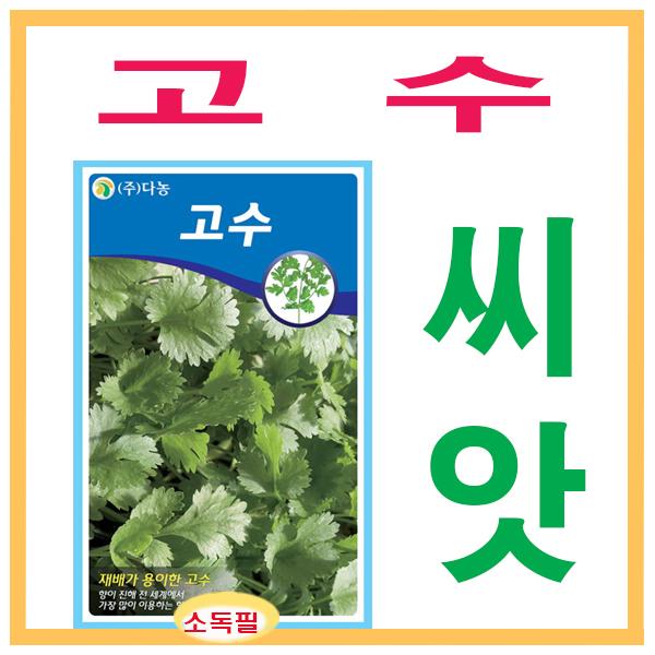 생활백화점 씨앗 채소씨앗 건강고수씨앗(코리안더) 