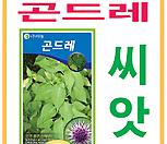 생활백화점 씨앗 채소씨앗 곤드레(고려엉겅퀴)씨앗 