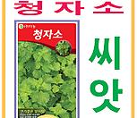 생활백화점 씨앗 채소씨앗 청자소(녹색차조기)씨앗 