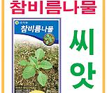 생활백화점 씨앗 채소씨앗 참비름나물씨앗 