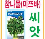 생활백화점 씨앗 채소씨앗 미쯔바참나물(관동) 
