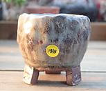 수제화분 1873|Handmade Flower pot