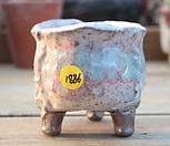 수제화분1886|Handmade Flower pot