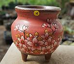 윤수제화분4|Handmade Flower pot