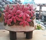 민들레수제화분414 Handmade Flower pot