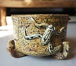 개구리수제분|Handmade Flower pot
