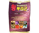 비료 퇴비 상토 왕뿌리근(2kg)|