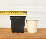 9cm 물결 플라스틱화분 3호(10+1/사각플분 파종분 플분)|