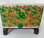 우암도예수제분 1-116|Handmade Flower pot