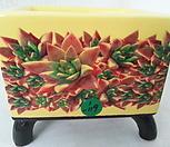 우암도예수제분 1-119|Handmade Flower pot