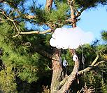 스틸데코 구름비 (정원장식, 조형물, 정원소품, 정원꾸미기, 홈가드닝)|Echeveria still