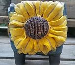 민들레수제화분1941|Handmade Flower pot