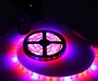 다육이 실내재배 필수품♥스트립 띠막대 타입 LED 세트/식물생장 LED