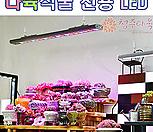 다육식물 전용 LED 테라 강력추천 테라600, 1200 (신규입고)