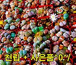 生石花믹스种子천(1,000)립+사은품(HB-10110ml,황錦사500g)^0^/|Lithops