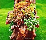 다육식물 천연나무화분 S