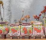 딸기공장[분홍이]