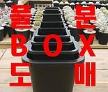 사각플분 BOX도매, 사각플라스틱화분, 튼튼화분, 화분, 플분, 플라스틱화분