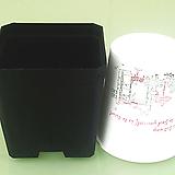 7개-사각 플분 7.5cm (10+1) 플라스틱화분 사각포트 파종분