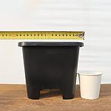 18cm 플라스틱화분 5호(10+1/튼튼한플분 사각플분 파종분 플분)