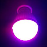다육이 실내재배 필수품♥10W LED♥식물생장등♥다육이등 다육|