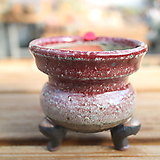 강천手工花盆131|Handmade Flower pot