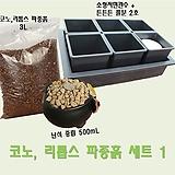 코노, 리톱스 파종흙 세트1|Lithops