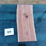 통나무슬라이스(박쥐란헌팅트로피,기타diy재료)참죽나무0112xp02|