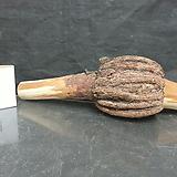 복을 부르는 복력목(福力木)diy용도 기타원예자재0116xp01|