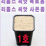 生石花种子복토용|Lithops