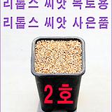 生石花种子복토용2호|Lithops