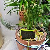 식물 이름표 토끼01 (5개입) 