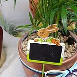 이름표 토끼모형02 식물이름표 5개 