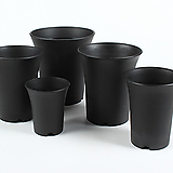 XXL 수입 긴화분 플라스틱화분 다육식물 하월시아 플분|haworthia