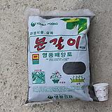 영풍분갈이배합토10L(大포장)|