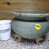 수제분 1197|Handmade Flower pot