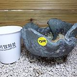 수제분 1214|Handmade Flower pot