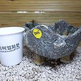 수제분 1215|Handmade Flower pot