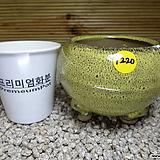 수제분 1220|Handmade Flower pot